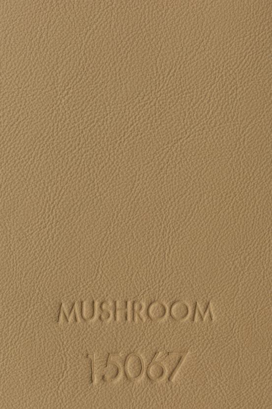 MUSHROOM 15067