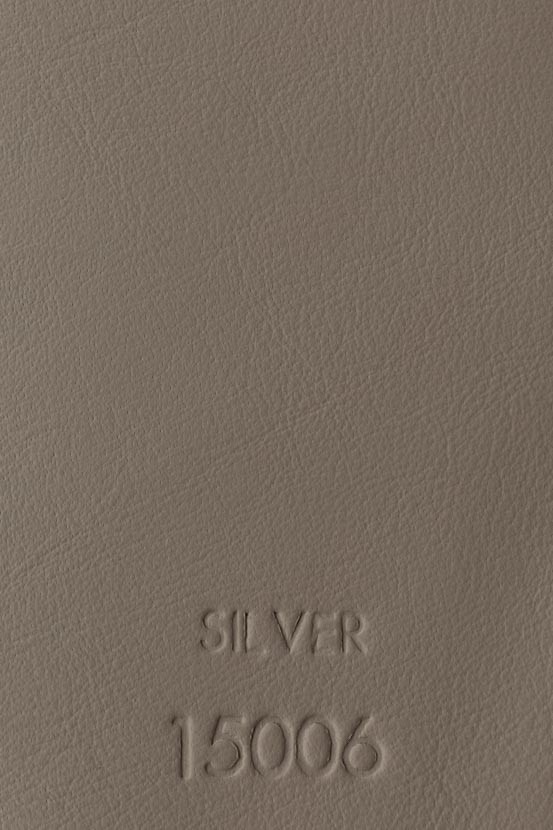 SILVER 15006