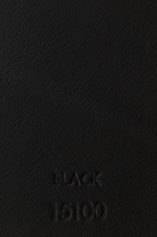 BLACK 15100